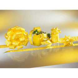 Stelle Mimosa Diam. Cm. 5 Pz. 128