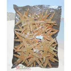 Stella Baby Starfish Cm 5
