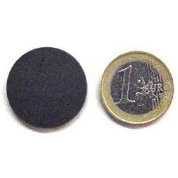 Magnete a disco in Ferrite anisotropa mm 25x3 CER S 30